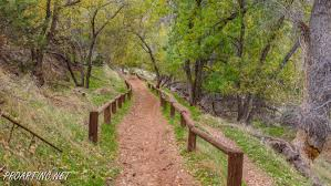 Bench Trail Sand Bench Horse Trail Proartinc