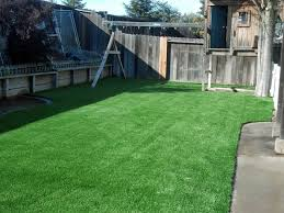 Fake Grass For Patio Best Synthetic Grass Richmond Virginia City Of Richmond