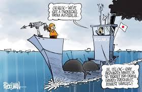 Whaling Meme - stan steam on twitter rt broelman cartoon whaling and wackos