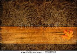 thanksgiving background stock images royalty free images