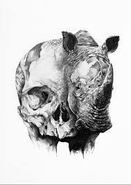 the 25 best rhino tattoo ideas on pinterest rhino art animal