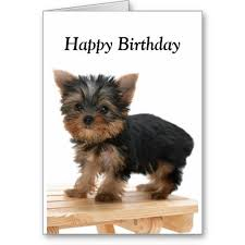 birthday cards with dog pictures