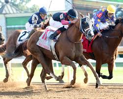 lexus woodford twitter news keeneland thoroughbred racing and sales