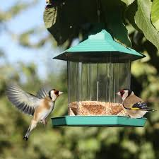 petsn u0027all acrylic clear view window bird feeder u2013 aspectek