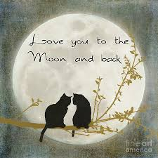 you to the moon and back digital by lees
