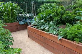 What Type Of Wood Is Best For Raised Garden Beds How To Raise Your Garden Bed Wtop