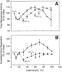 effects of oxygen on nodule physiology and expression of nodulins