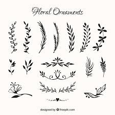 collection of flowers ornament vector free