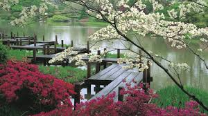Flower Gardens Wallpapers - flower chair flowers day vase beautiful leaves flower garden