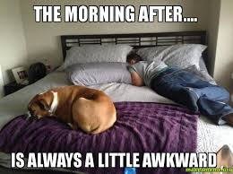 Morning After Meme - the morning after is always a little awkward make a meme