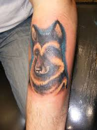 belgian shepherd tattoo german shepherd tattoo tattoos pinterest german shepherd