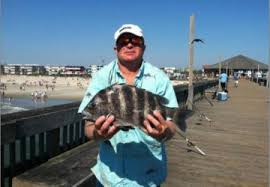 fishing on tybee island pier charter fishing in ga
