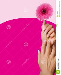 perfect set of acrylic nails and pink flower royalty free stock