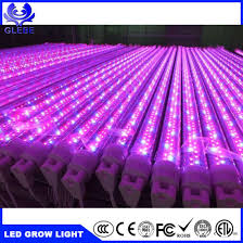 red and blue led grow lights china 20w red blue full spectrum t8 tube led grow lights china