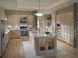 Led Lighting For Kitchen Cabinets Fancy Under Lighting For Kitchen Cabinets Using Puck Led Lights