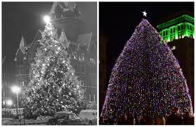 drape of lights hides character of clinton square tree your