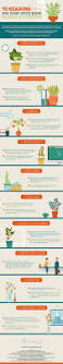 10 ways office plants improve productivity infographic