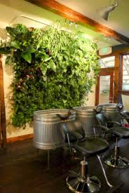 interior vertical garden finest create an interior vertical