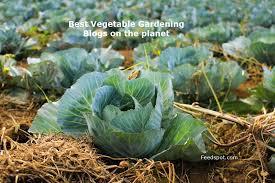 top 75 vegetable gardening blogs u0026 websites for vegetable gardeners