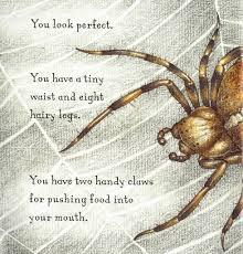 are you a spider judy allen macmillan