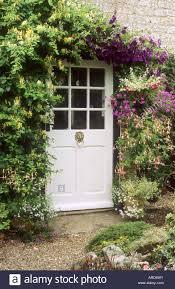 cottage front door honeysuckle clematis containers lonicera