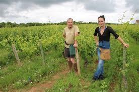 offre emploi chambre agriculture attractive chambre d agriculture offre d emploi 12 exemple cv