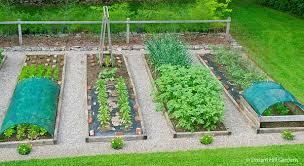 Raised Bed Gardening Organic Gardening Tips That Everybody Should Know See This