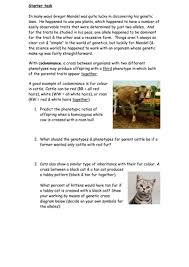 codominance questions by cmrcarr teaching resources tes