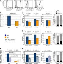 impact of substrate elasticity on human hematopoietic stem and