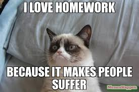 Newspaper Cat Meme - homework is suffering jpg