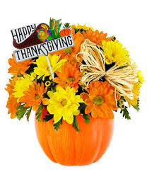 happy thanksgiving pumpkin patch at from you flowers