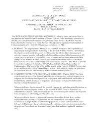 memorandum of understanding template affordablecarecat