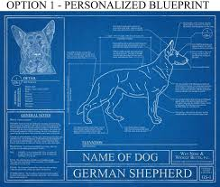 belgian shepherd for sale philippines personalized german shepherd blueprint german shepherd art