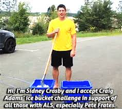 Sidney Crosby Memes - mygifs pittsburgh penguins sidney crosby pascal dupuis