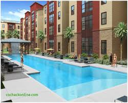 one bedroom apartments tallahassee marvelous 1 bedroom apartments tallahassee eizw info