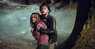 harry and hermione or ron and hermione u2013 harrypotterfan327