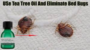 natural bed bug remedies 11 natural remedies to eliminate bed bugs for good recipes