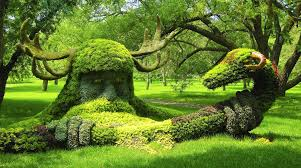 Cairns Botanical Garden by Gardens The Ucs Fellows Garden Idolza