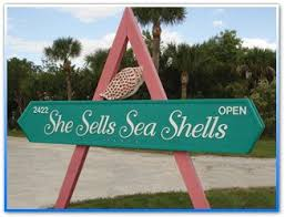 where to buy seashells 173 best seashells gifts from the sea images on sea
