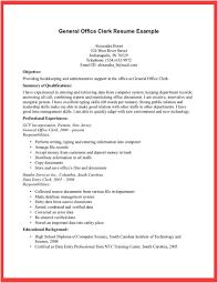 Senior Accounting Professional Resume Resume Sample Accounting Clerk Resume