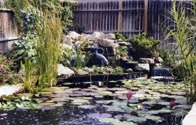 backyard pond accessories u0026 supplies phoenix arizona koi ponds