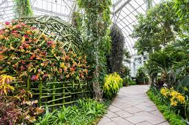 Botanical Garden Orchid Show See The Extraordinary Orchid Creations Of Master Flower Artist
