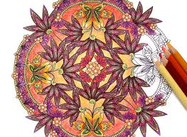 coloring flower mandalas coloring book preview wendypiersall