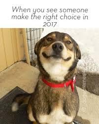 Doge Original Meme - images about dogememes4u tag on instagram