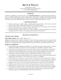 sample resume career summary best ideas of financial risk analyst sample resume in job summary awesome collection of financial risk analyst sample resume for your download resume