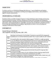 Good Objective On Resume Stunning What To Put In Objective On Resume Ideas Simple Resume
