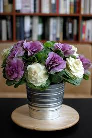 would you like some ornamental kale with that come flowers