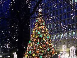 shining ideas show me trees tree colors decorating