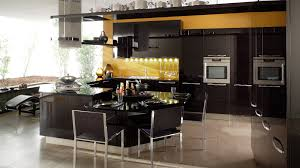 Open Kitchen Designs With Island Kitchen Redoubtable Black Polished Bamboo Kitchen Cabinets Panels