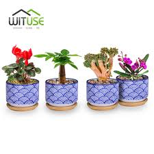 Cute Succulent Planters by Popular Vintage Ceramic Planter Buy Cheap Vintage Ceramic Planter